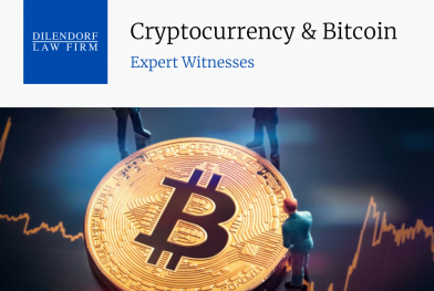 Cryptocurrency & Bitcoin Expert Witnesses